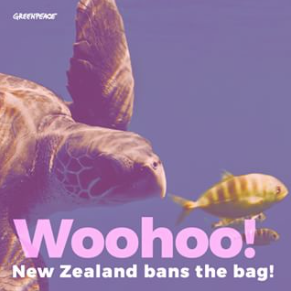 The Bag is Banned