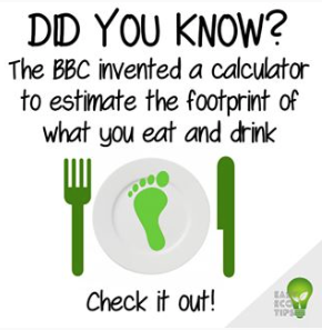Calculate Your Footprint