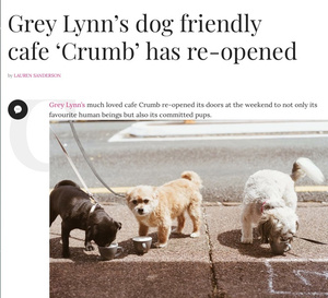 Crumb In The News